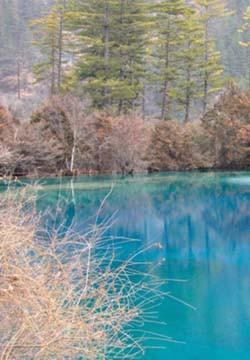 [风景图片]九寨沟冬季唯美小清新图片