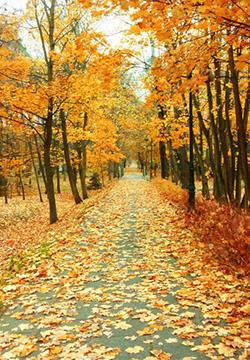 [风景图片]长夏逝去,山野间的初秋悄然涉足