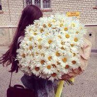 唯美头像捧花的女孩图片