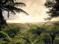美丽的自然风景合集 第34辑